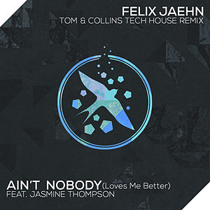 Ain't Nobody (Loves Me Better) (Tom & Collins Tech House Remix)