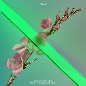 Never Be Like You (Disclosure Remix) [feat. Kai]