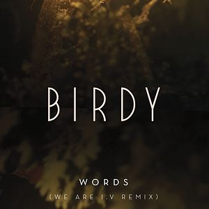 Words (We Are I.V Remix)