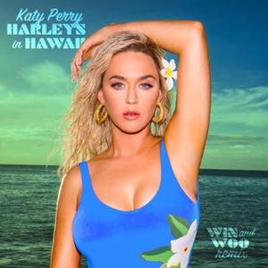 Harleys In Hawaii (Win and Woo Remix)