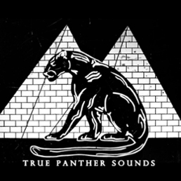 True Panther Sounds